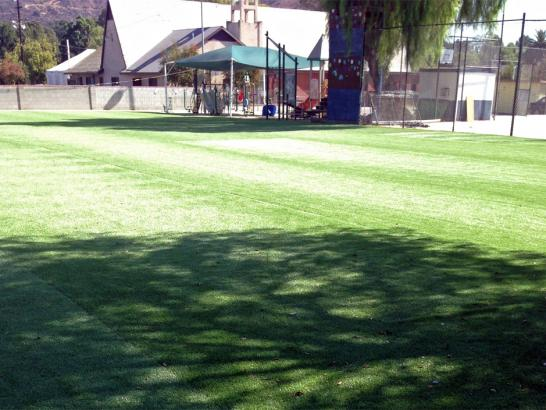 Artificial Grass Photos: Artificial Grass Carpet Alamo, California Landscape Ideas, Parks