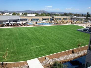 Artificial Grass Photos: Artificial Grass Carpet Pajaro, California Sports Athority, Commercial Landscape