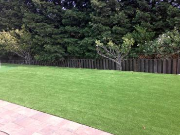 Artificial Grass Photos: Artificial Grass Carpet Yosemite Valley, California Landscaping Business, Backyard Landscaping Ideas