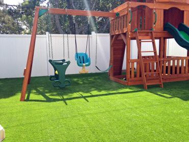 Artificial Grass Photos: Artificial Grass Copperopolis, California Lawn And Landscape, Backyard