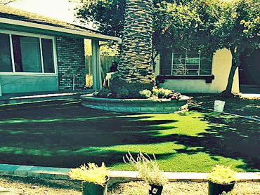 Artificial Grass Photos: Artificial Grass El Dorado Hills, California City Landscape, Front Yard Landscaping