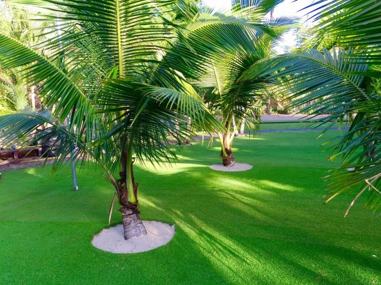 Artificial Grass Photos: Artificial Grass Folsom, California Gardeners, Commercial Landscape