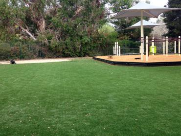 Artificial Grass Photos: Artificial Grass Installation Sheridan, California Lacrosse Playground