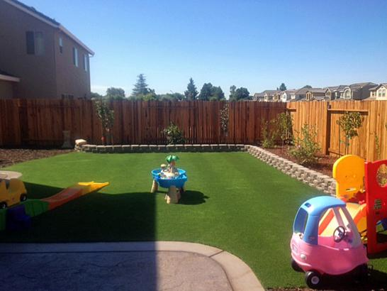Artificial Grass Photos: Artificial Grass Vallejo, California Landscape Photos, Backyard Landscaping