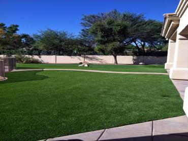 Artificial Grass Photos: Artificial Lawn Buena Vista, California Landscaping Business, Front Yard Landscape Ideas