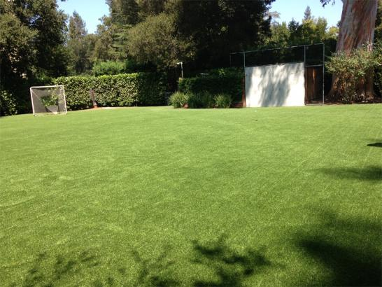 Artificial Grass Photos: Artificial Lawn Del Rey, California Softball, Backyard Designs