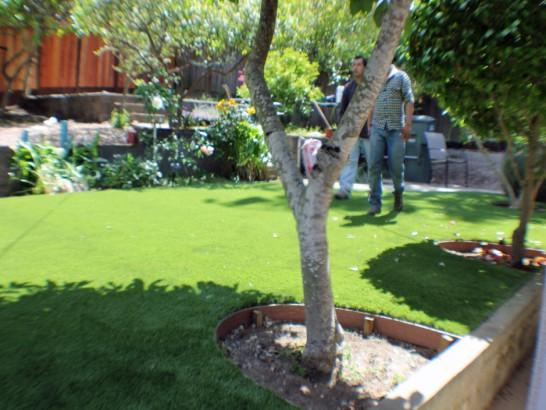 Artificial Lawn Hughson, California Landscaping Business, Beautiful Backyards artificial grass