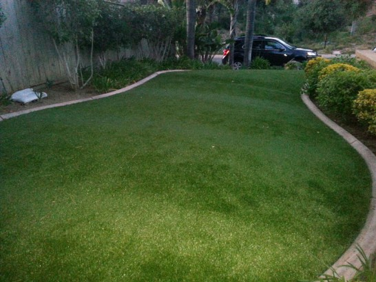 Artificial Grass Photos: Artificial Lawn Loomis, California Home And Garden, Small Front Yard Landscaping