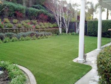 Artificial Grass Photos: Artificial Lawn Prunedale, California Garden Ideas, Backyard Makeover