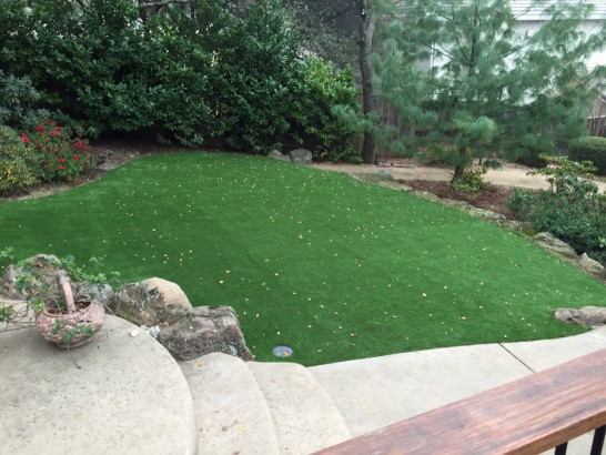 Artificial Lawn San Juan Bautista, California Home And Garden, Backyard Design artificial grass