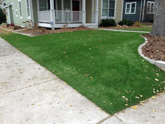 Artificial Grass Photos: Artificial Turf Alameda, California City Landscape, Small Front Yard Landscaping
