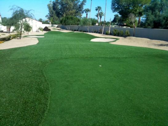 Artificial Turf Burlingame, California Indoor Putting Greens artificial grass