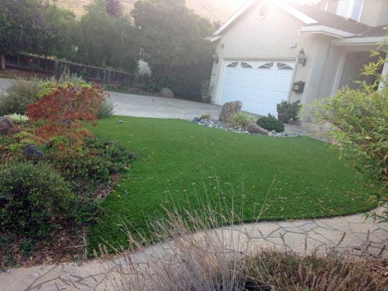 Artificial Grass Photos: Artificial Turf Cost Clayton, California Design Ideas, Landscaping Ideas For Front Yard