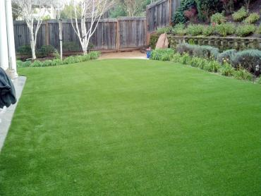 Artificial Grass Photos: Artificial Turf Cost Keyes, California Gardeners, Backyard Makeover