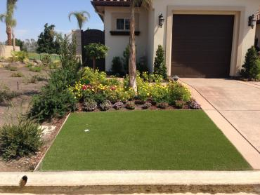 Artificial Grass Photos: Artificial Turf Cost Orangevale, California Paver Patio, Front Yard Landscaping