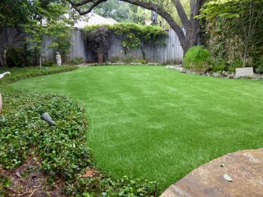 Artificial Grass Photos: Artificial Turf Cost Ripon, California Landscape Rock, Backyard Design