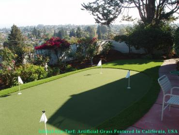 Artificial Grass Photos: Artificial Turf Cost San Leandro, California Landscape Ideas, Backyard Designs