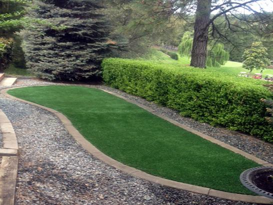 Artificial Grass Photos: Artificial Turf Crockett, California Garden Ideas