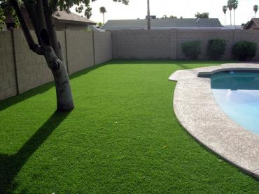 Artificial Grass Photos: Artificial Turf East Sonora, California Paver Patio, Pool Designs
