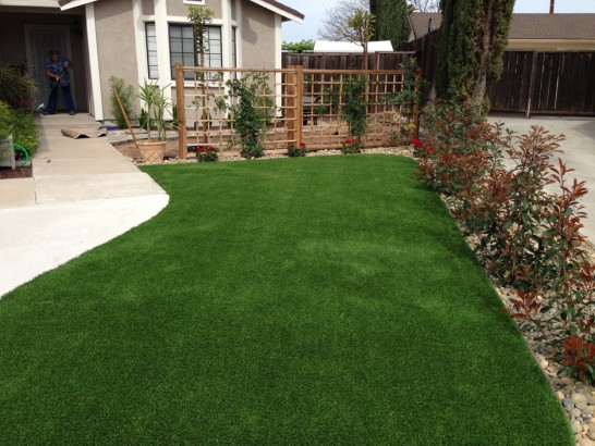 Artificial Turf Hollister, California Garden Ideas, Front Yard artificial grass