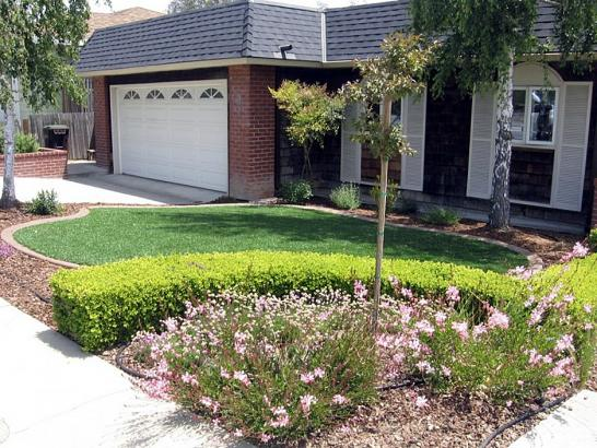 Artificial Turf Installation Amesti, California Lawn And Landscape, Front Yard Design artificial grass