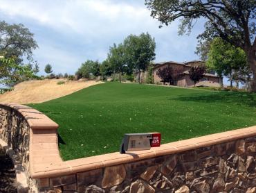 Artificial Grass Photos: Artificial Turf Installation Beale Air Force Base, California Design Ideas, Front Yard Design