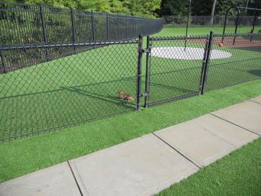 Artificial Grass Photos: Artificial Turf Installation Lodi, California Garden Ideas, Recreational Areas