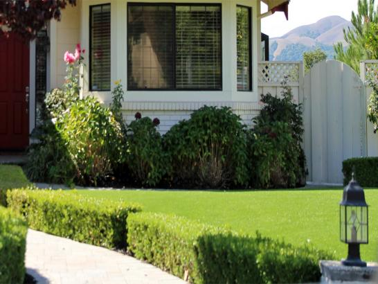 Artificial Grass Photos: Artificial Turf Lucerne, California Rooftop, Front Yard