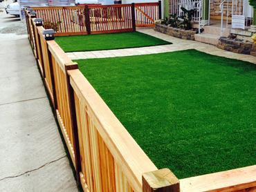 Artificial Grass Photos: Artificial Turf Merced, California Landscape Ideas, Landscaping Ideas For Front Yard