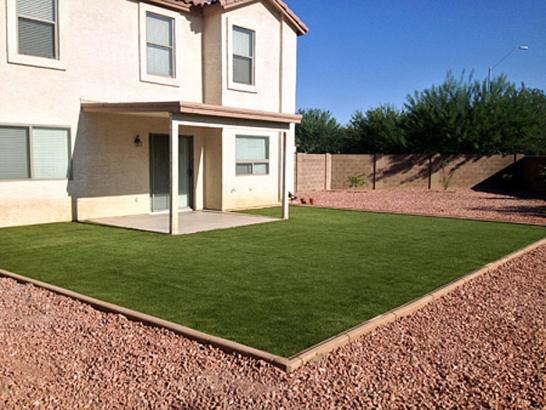 Artificial Grass Photos: Best Artificial Grass Esparto, California Backyard Deck Ideas, Backyard Designs