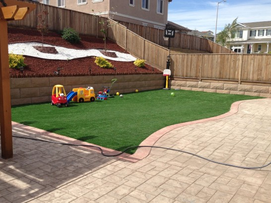 Artificial Grass Photos: Best Artificial Grass Kelseyville, California Lacrosse Playground, Backyard Designs