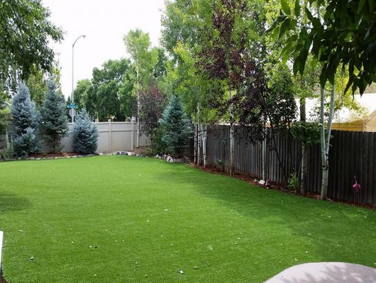 Artificial Grass Photos: Best Artificial Grass Morada, California Dog Hospital, Backyard Designs