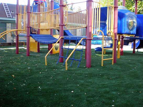 Artificial Grass Photos: Fake Grass Cambrian Park, California Playground Safety, Commercial Landscape