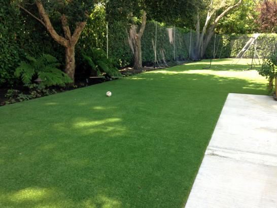 Artificial Grass Photos: Fake Grass Carpet Cambria, California Backyard Playground