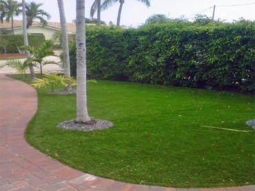 Artificial Grass Photos: Fake Grass Carpet Collierville, California Roof Top, Front Yard Design
