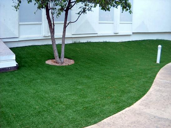 Fake Grass Carpet Tiburon, California Backyard Playground, Commercial Landscape artificial grass