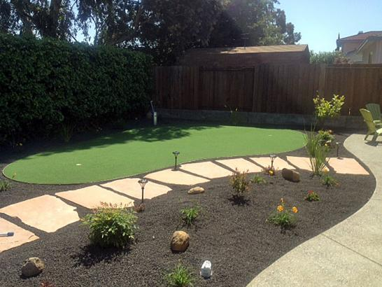 Artificial Grass Photos: Fake Grass Corte Madera, California Putting Green Grass, Backyard Landscape Ideas