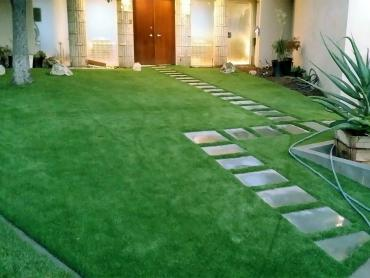 Artificial Grass Photos: Fake Grass Grass Valley, California Roof Top, Front Yard Landscaping Ideas
