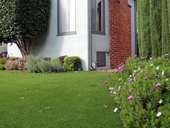 Fake Grass Hilmar-Irwin, California Backyard Playground, Front Yard Ideas artificial grass