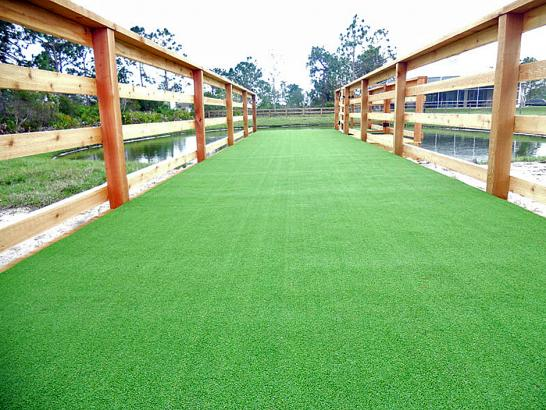 Artificial Grass Photos: Fake Grass Portola, California Design Ideas, Commercial Landscape