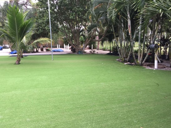 Artificial Grass Photos: Fake Lawn Granite Bay, California Landscape Ideas, Commercial Landscape
