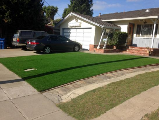 Artificial Grass Photos: Fake Lawn Parlier, California Design Ideas, Front Yard Landscaping