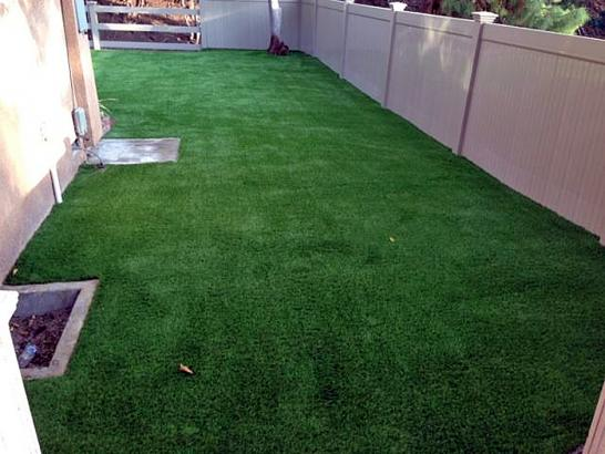 Artificial Grass Photos: Fake Lawn Penngrove, California Gardeners, Small Backyard Ideas