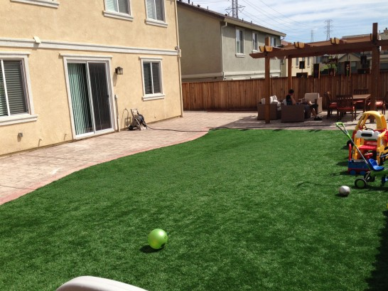 Artificial Grass Photos: Fake Lawn Plumas Lake, California Landscaping Business, Backyards