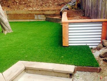 Artificial Grass Photos: Fake Lawn Sutter, California Home And Garden, Backyard Landscape Ideas