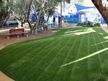 Artificial Grass Photos: Fake Turf Meadow Vista, California Home And Garden, Commercial Landscape