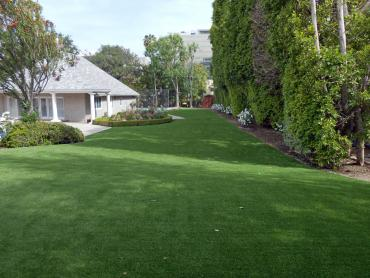 Artificial Grass Photos: Faux Grass Cameron Park, California Indoor Dog Park, Landscaping Ideas For Front Yard
