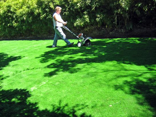 Artificial Grass Photos: Faux Grass Kettleman City, California Rooftop, Backyard Design