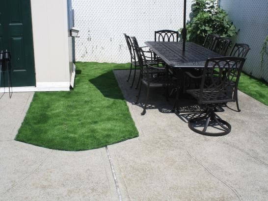 Artificial Grass Photos: Grass Carpet Armona, California Landscape Photos, Backyard Landscaping