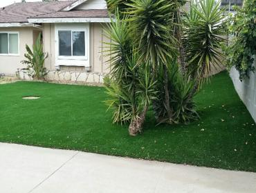 Artificial Grass Photos: Grass Carpet Chowchilla, California Landscaping, Front Yard Landscaping Ideas